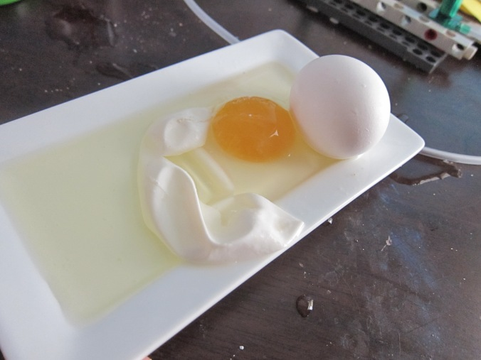 Egg in vinegar science experiment