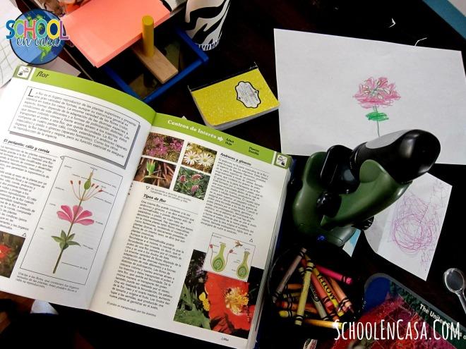 Biologia Montessori