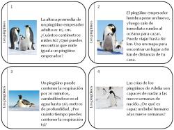 Tarjetas de trabajo: pinguinos
